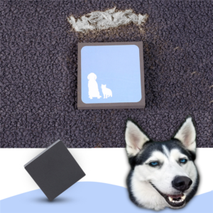 Magic Pet Hair Cleaning Square